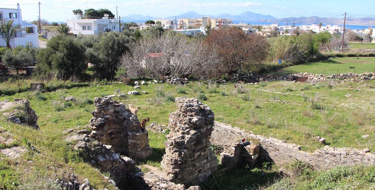 Kapama Basilica