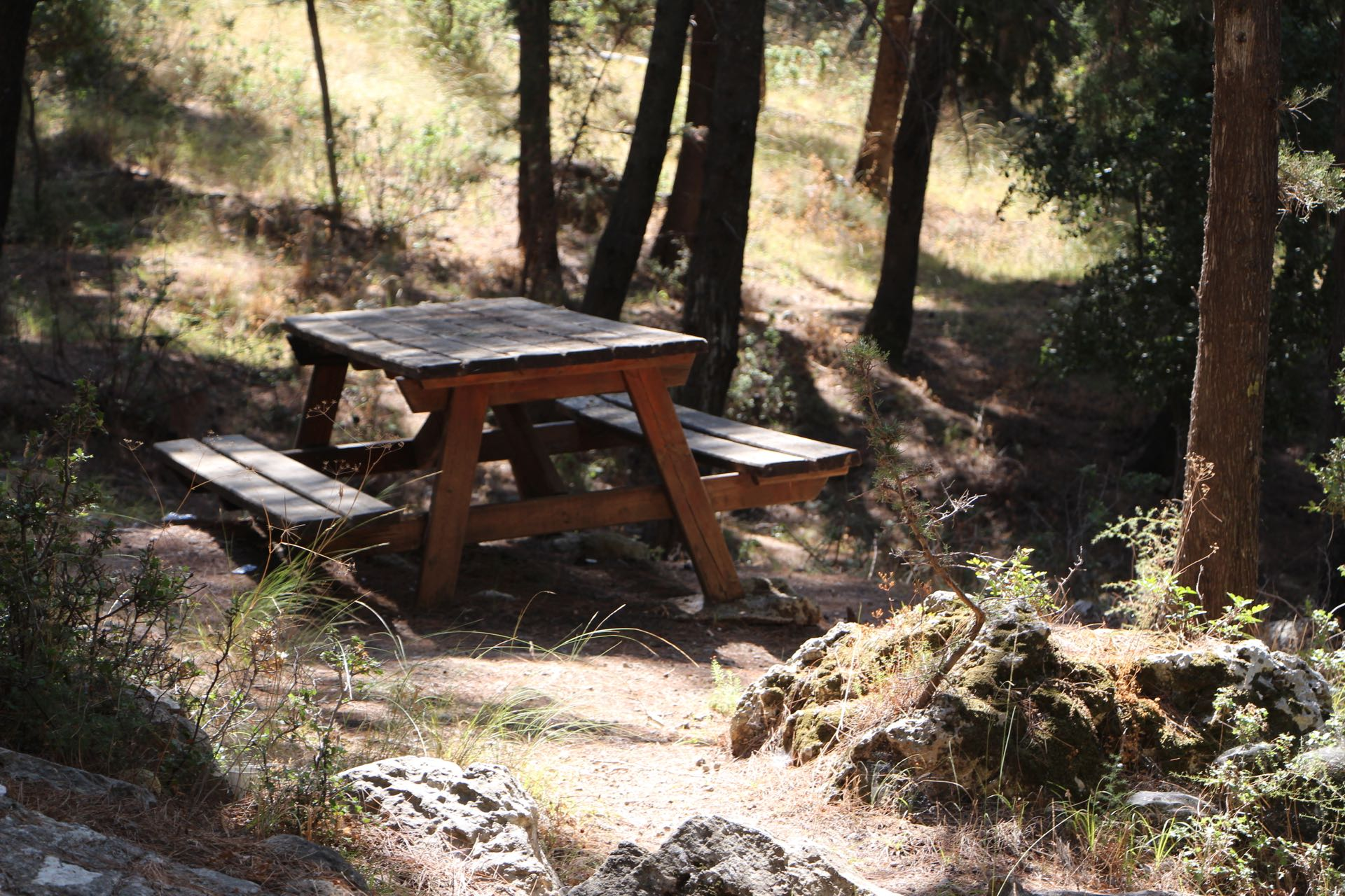 PIcnic table at the Koniario recreational area