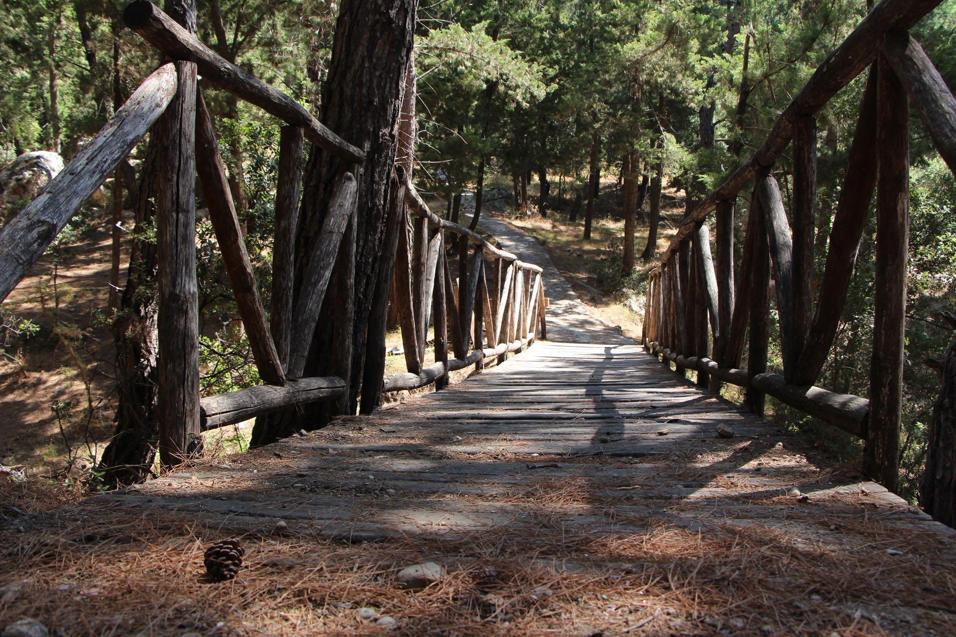 Bridge at the Koniario recreational area